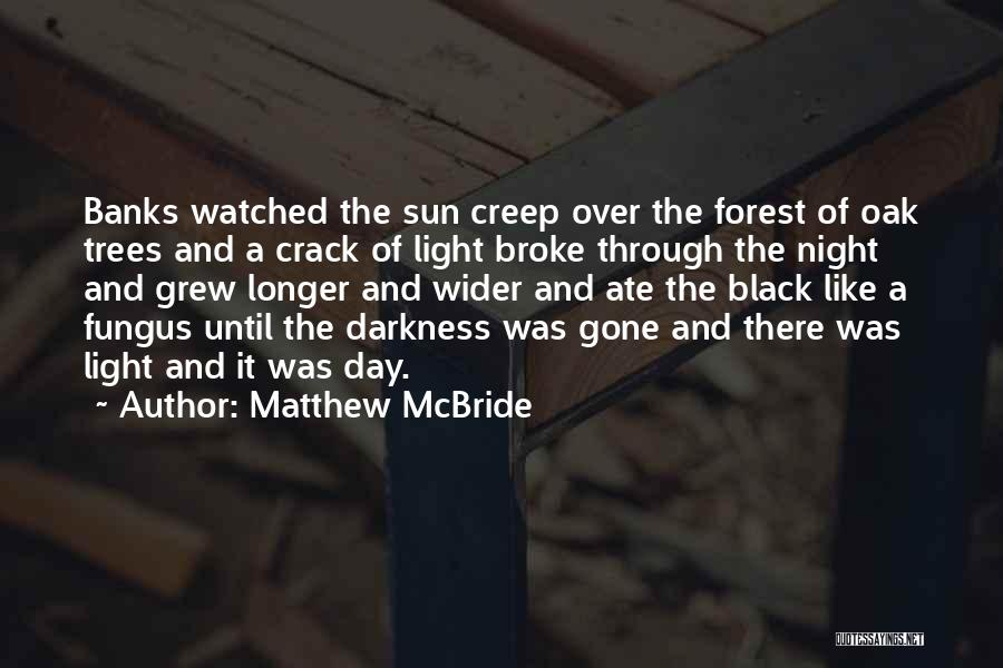 The Black Forest Quotes By Matthew McBride