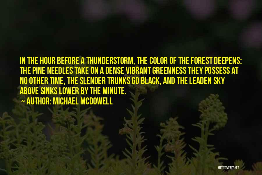 The Black Forest Quotes By Michael McDowell