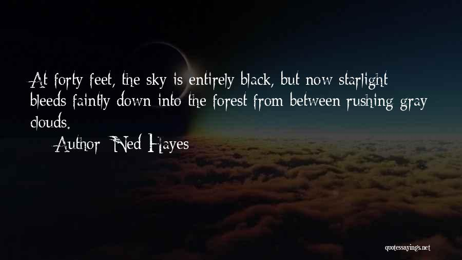 The Black Forest Quotes By Ned Hayes