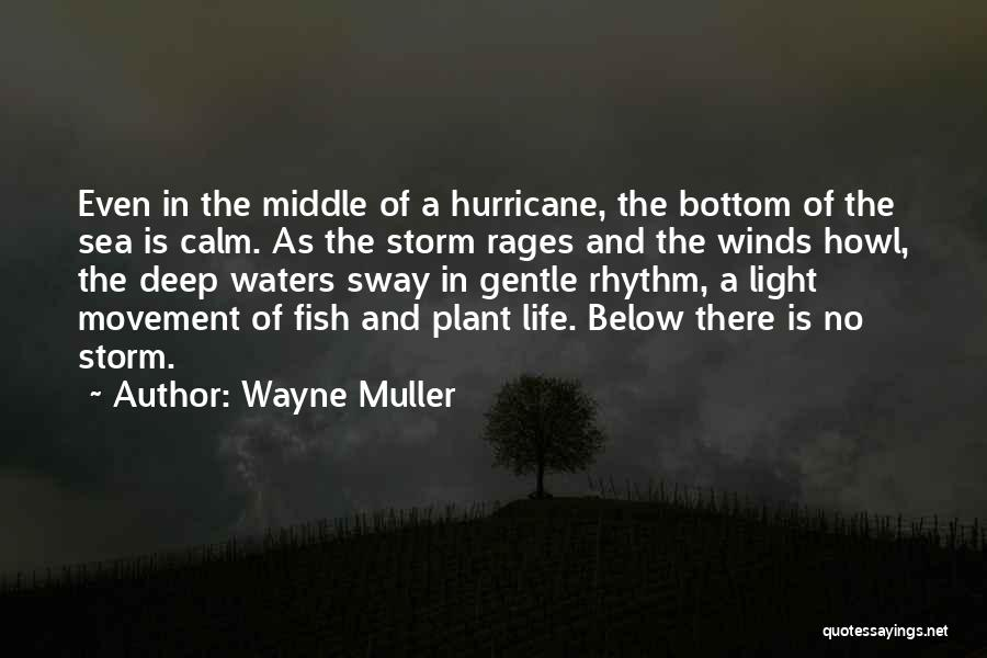 The Bottom Of The Sea Quotes By Wayne Muller