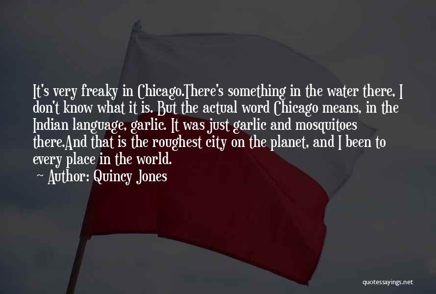 The City Chicago Quotes By Quincy Jones