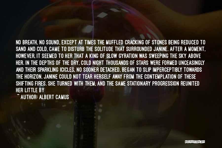 The Desert Sky Quotes By Albert Camus