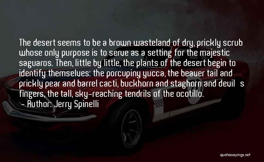 The Desert Sky Quotes By Jerry Spinelli