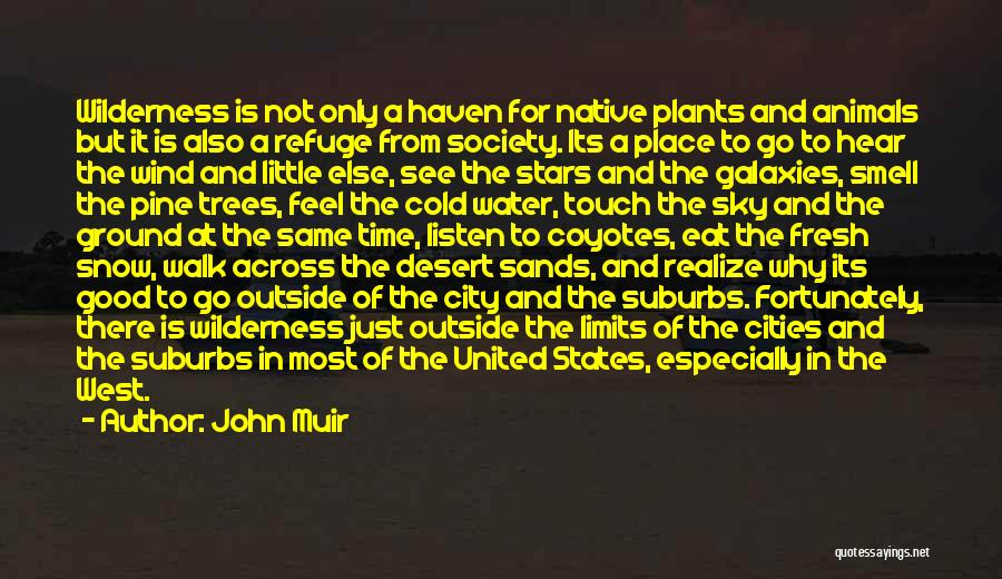 The Desert Sky Quotes By John Muir