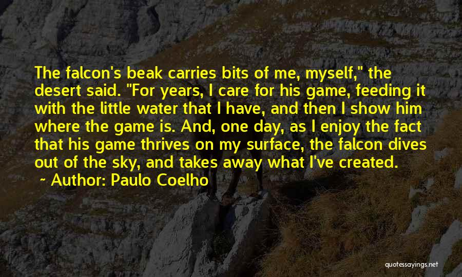 The Desert Sky Quotes By Paulo Coelho