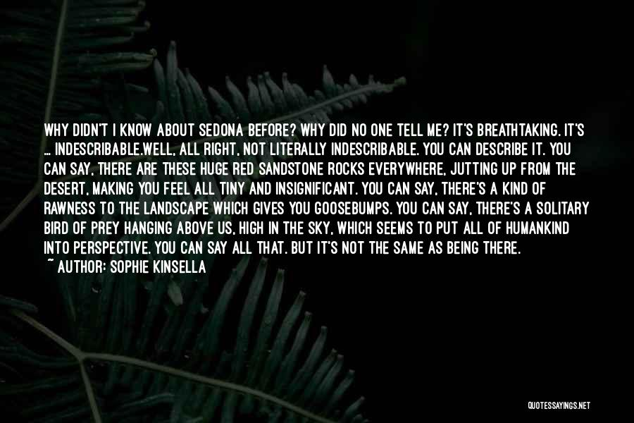 The Desert Sky Quotes By Sophie Kinsella