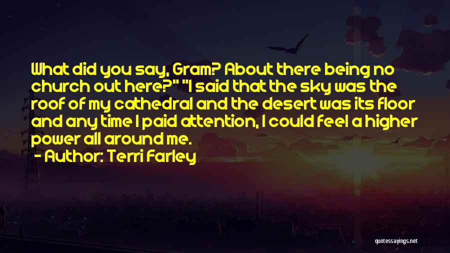 The Desert Sky Quotes By Terri Farley