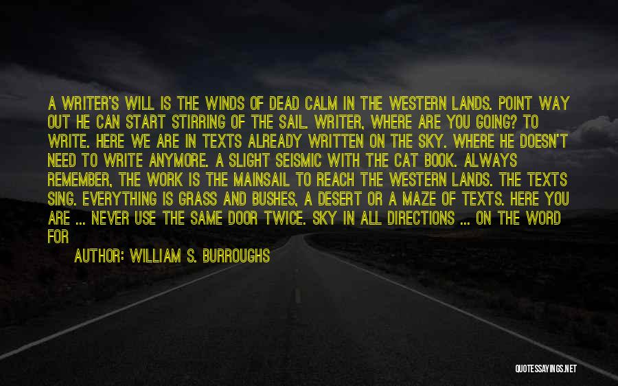 The Desert Sky Quotes By William S. Burroughs
