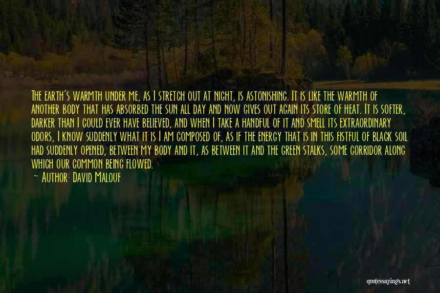 The Earth Day Quotes By David Malouf