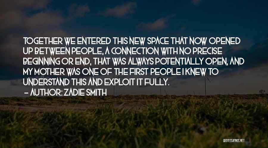 The End And New Beginning Quotes By Zadie Smith