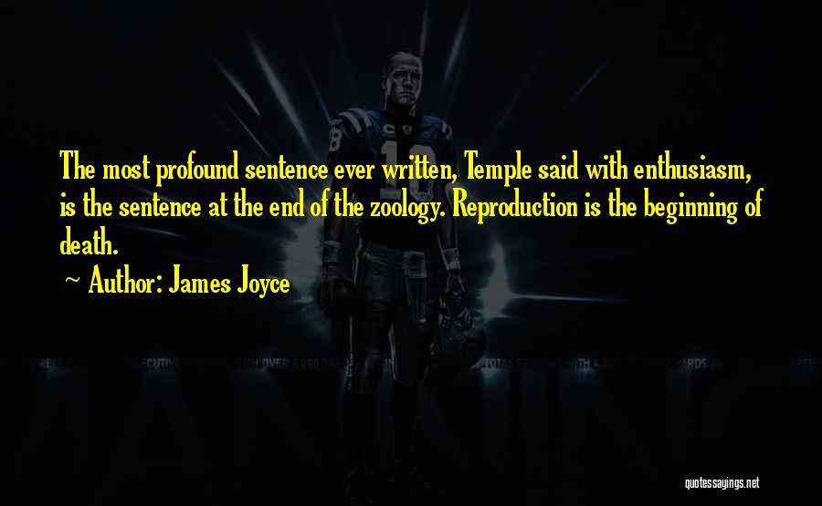 The End Beginning Quotes By James Joyce