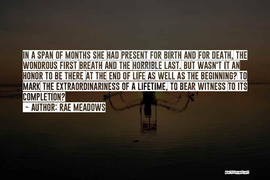 The End Beginning Quotes By Rae Meadows