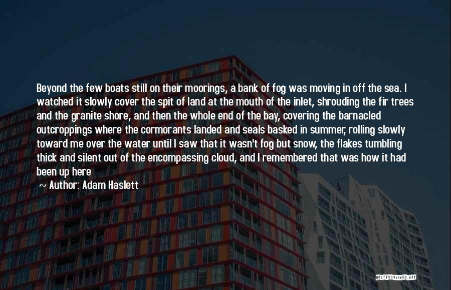 The End Of The Summer Quotes By Adam Haslett