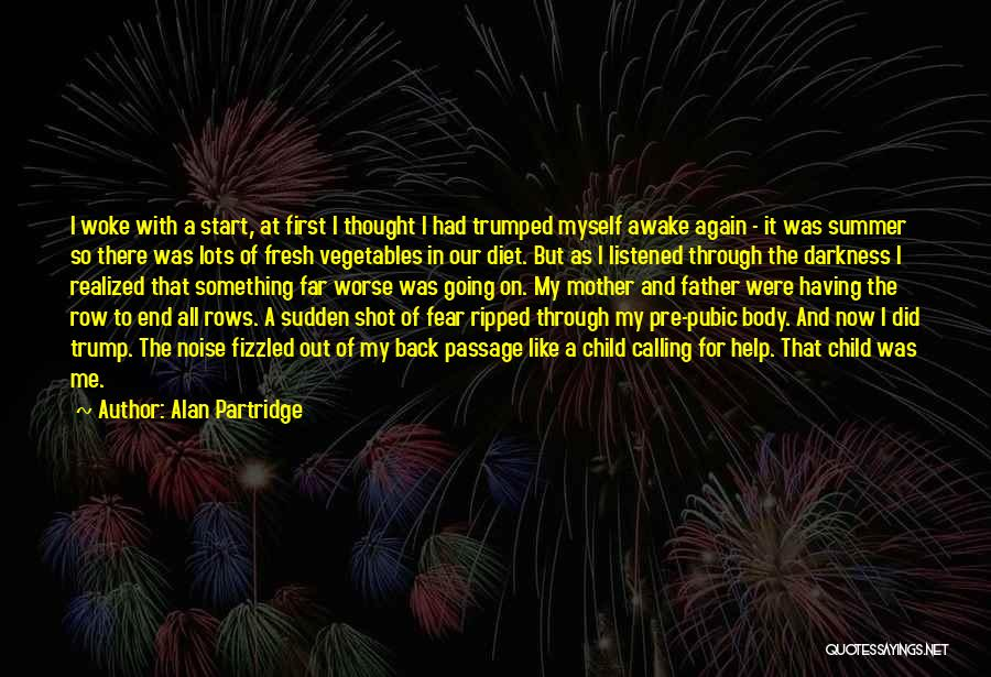 The End Of The Summer Quotes By Alan Partridge