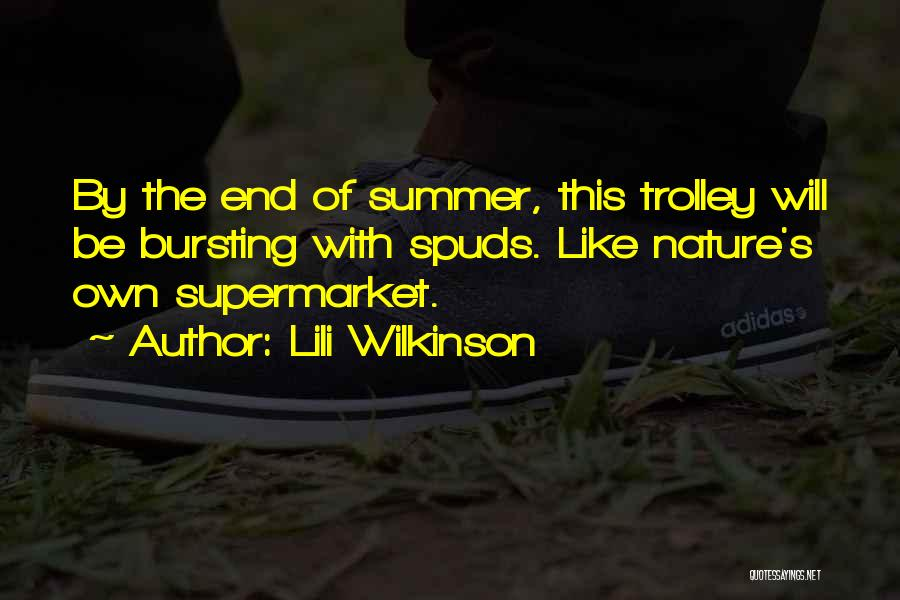 The End Of The Summer Quotes By Lili Wilkinson