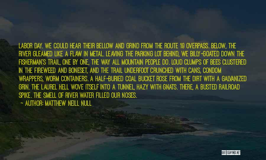 The End Of The Summer Quotes By Matthew Neill Null