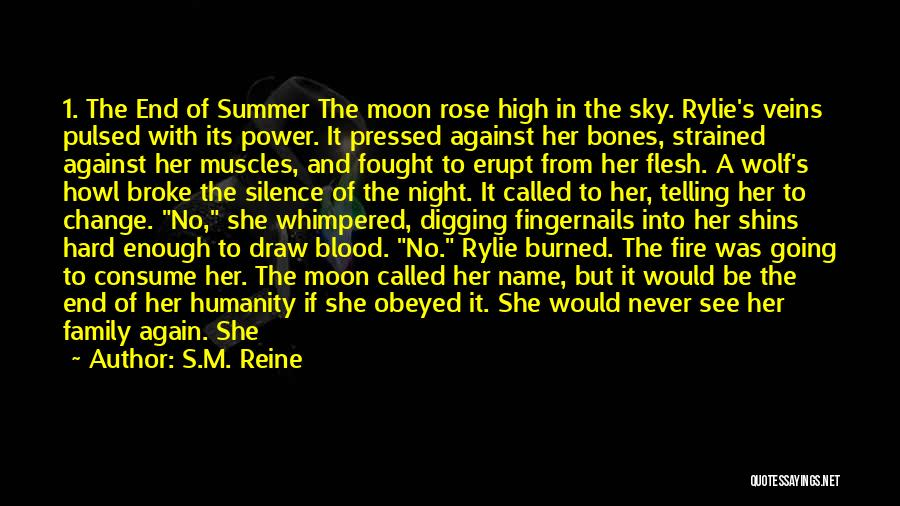 The End Of The Summer Quotes By S.M. Reine