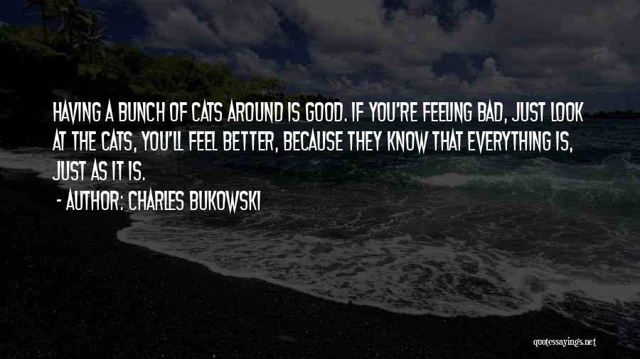 The Feeling Of Happiness Quotes By Charles Bukowski