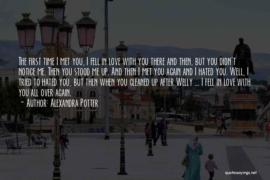 The First Time We Met Love Quotes By Alexandra Potter