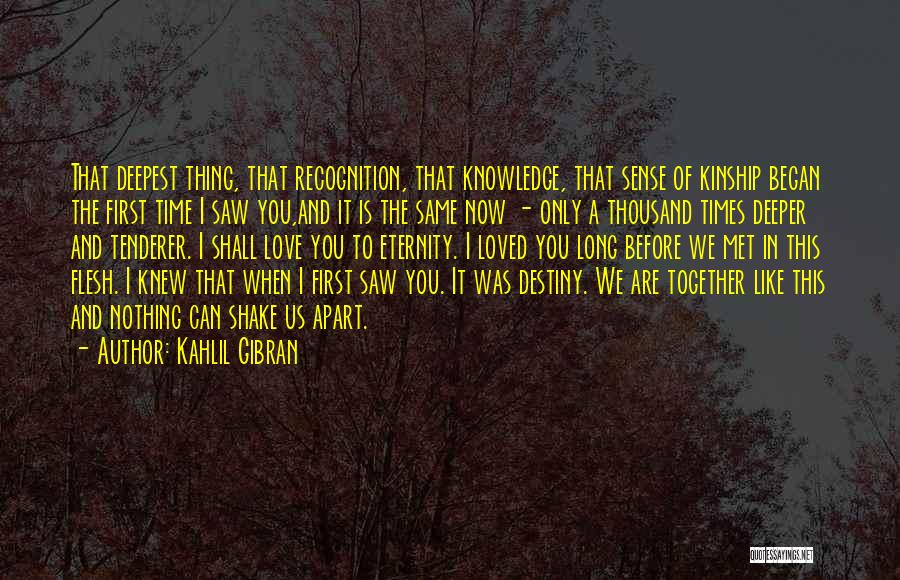 The First Time We Met Love Quotes By Kahlil Gibran