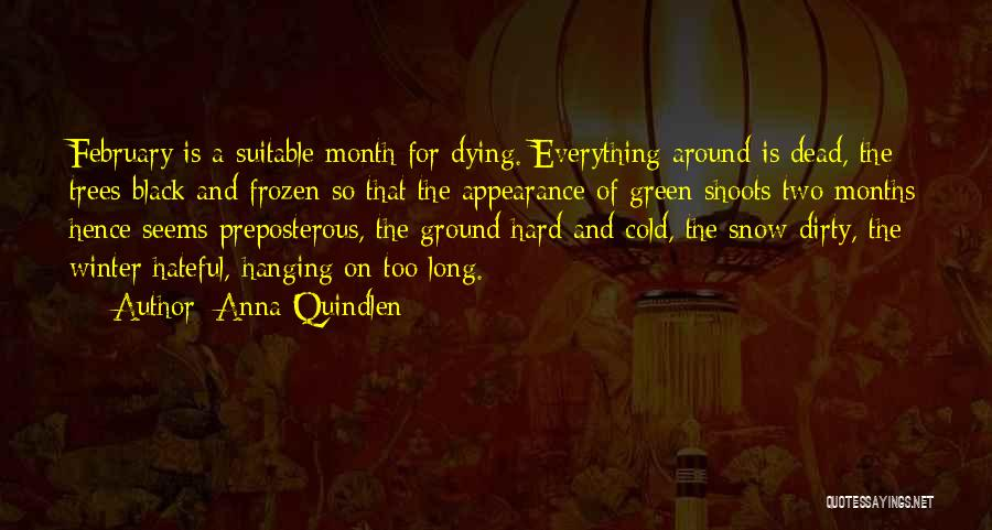 The Frozen Ground Quotes By Anna Quindlen