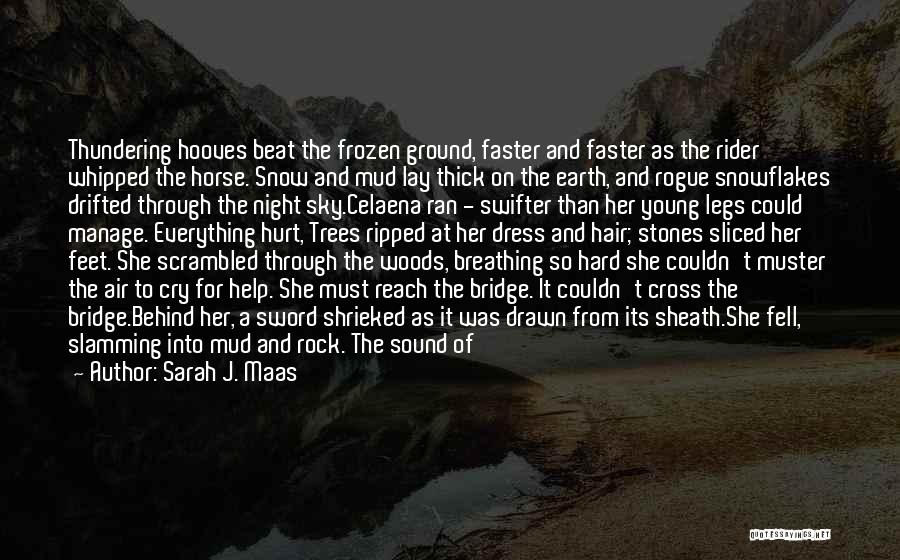 The Frozen Ground Quotes By Sarah J. Maas