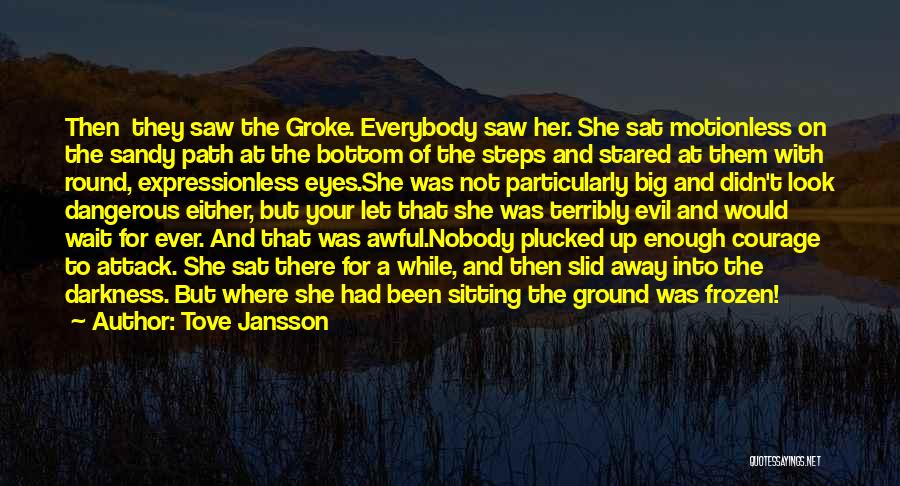 The Frozen Ground Quotes By Tove Jansson