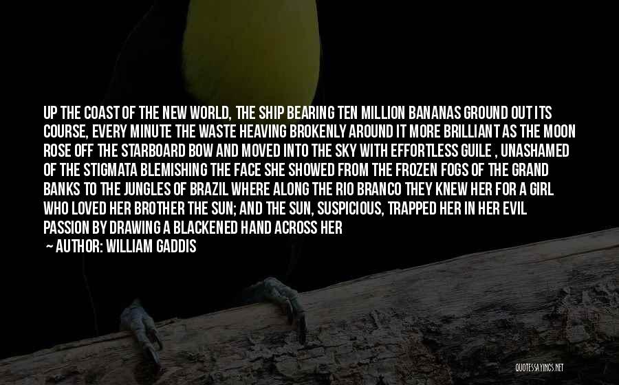 The Frozen Ground Quotes By William Gaddis