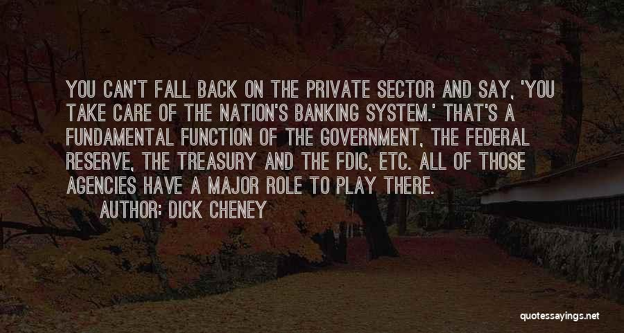 The Function Of Government Quotes By Dick Cheney