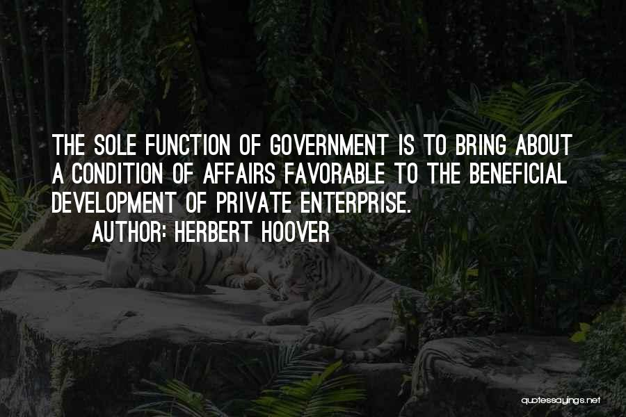 The Function Of Government Quotes By Herbert Hoover