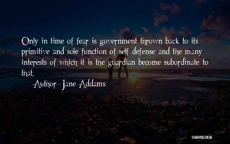 The Function Of Government Quotes By Jane Addams