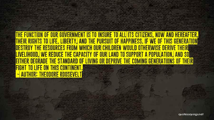 The Function Of Government Quotes By Theodore Roosevelt
