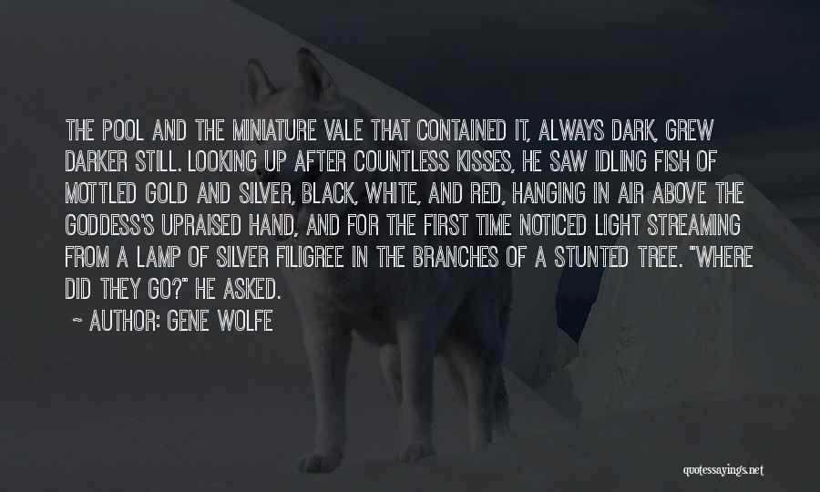 The Gene Pool Quotes By Gene Wolfe