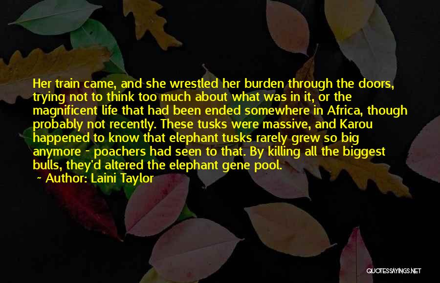 The Gene Pool Quotes By Laini Taylor
