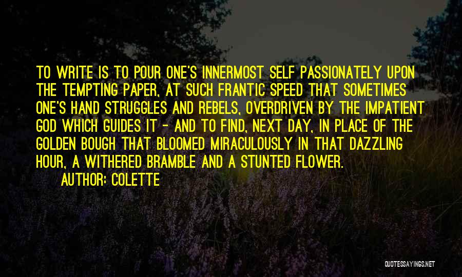 The Golden Hour Quotes By Colette