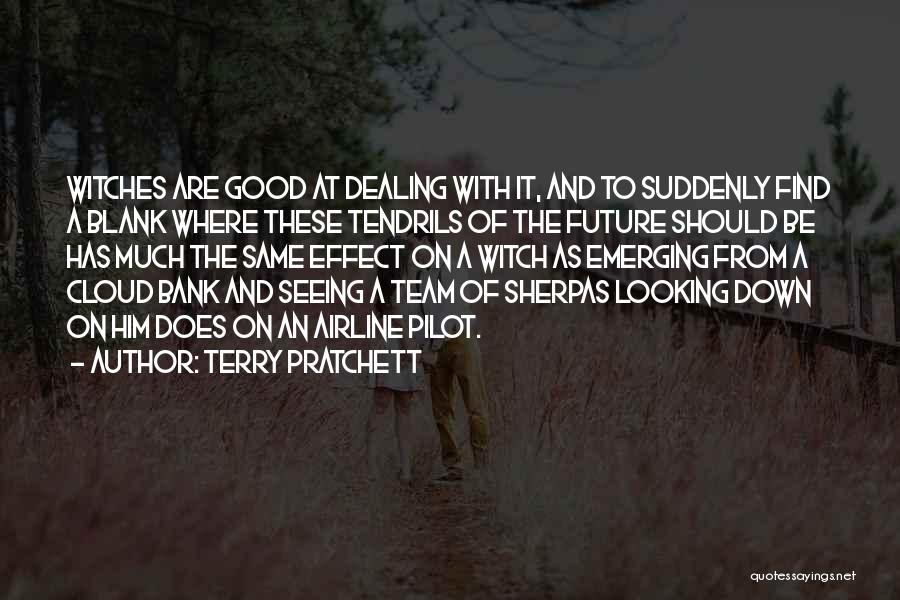 The Good Witch Quotes By Terry Pratchett