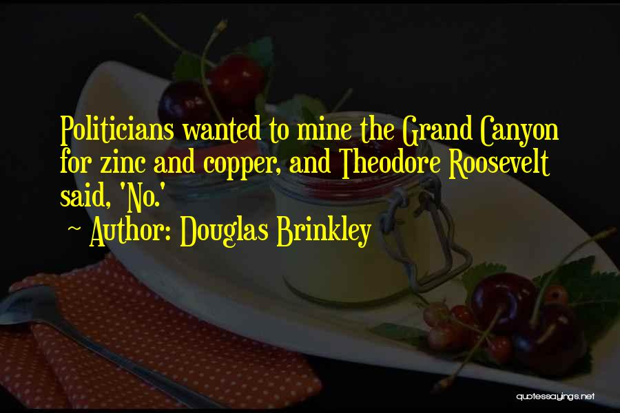 The Grand Canyon Theodore Roosevelt Quotes By Douglas Brinkley