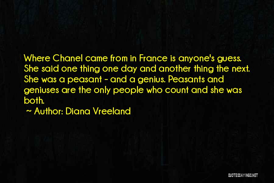 The Guess Who Quotes By Diana Vreeland