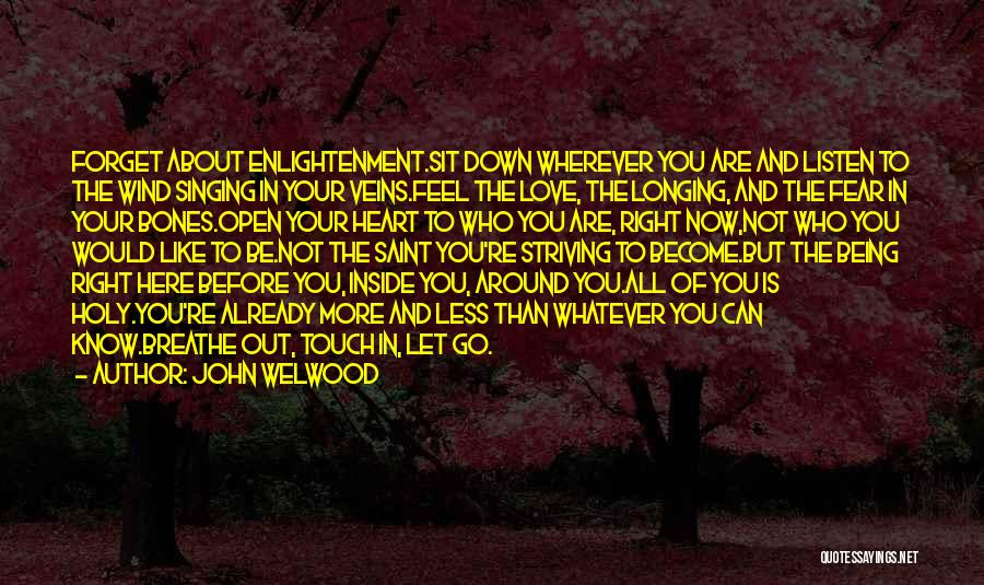 The Holy Longing Quotes By John Welwood