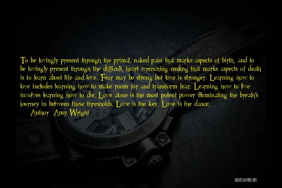 The Journey Of Death Quotes By Amy Wright