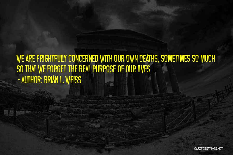 The Journey Of Death Quotes By Brian L. Weiss