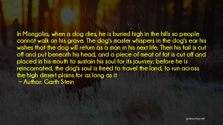 The Journey Of Death Quotes By Garth Stein