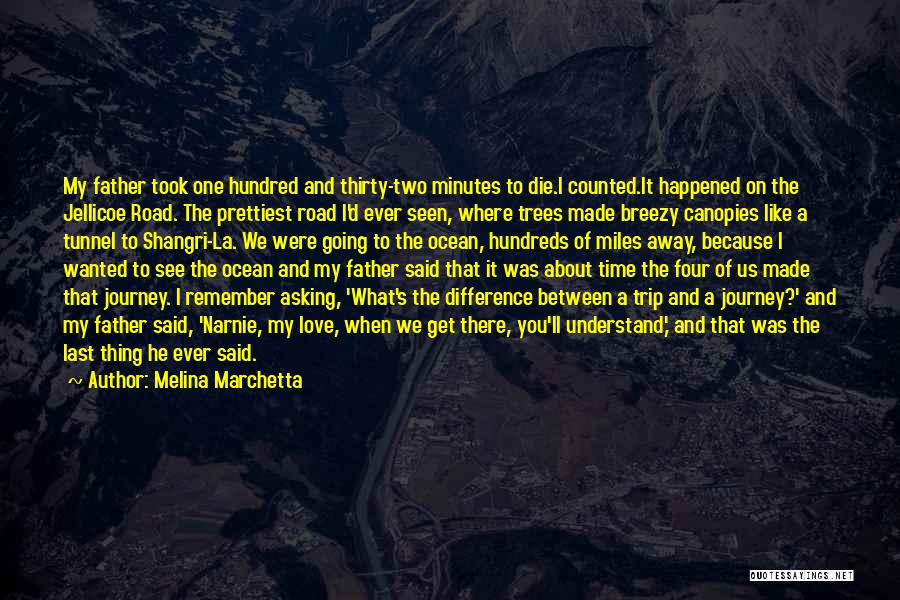 The Journey Of Death Quotes By Melina Marchetta