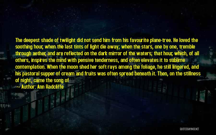 The Last Supper Quotes By Ann Radcliffe