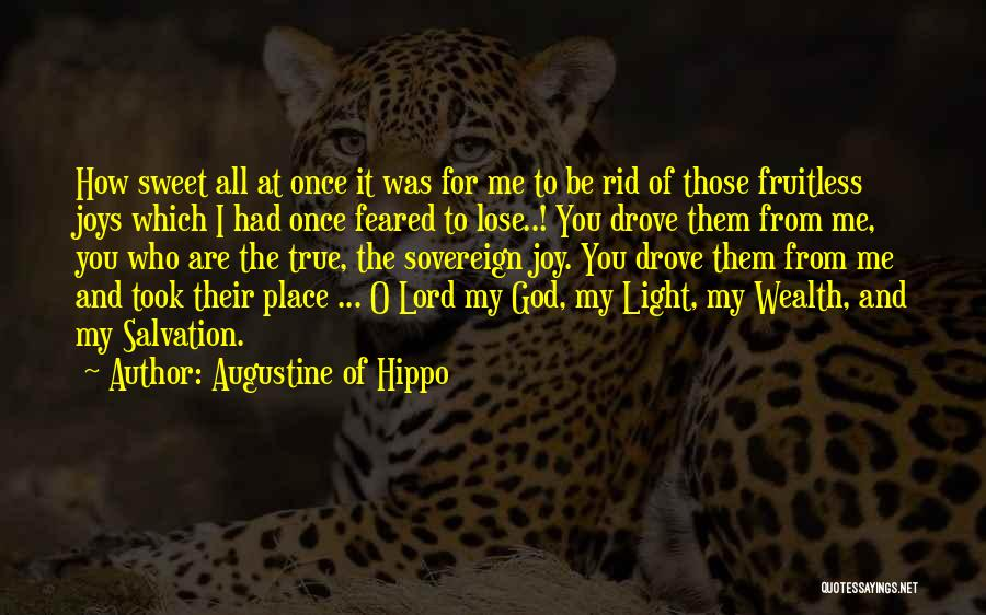 The Lord Of Light Quotes By Augustine Of Hippo