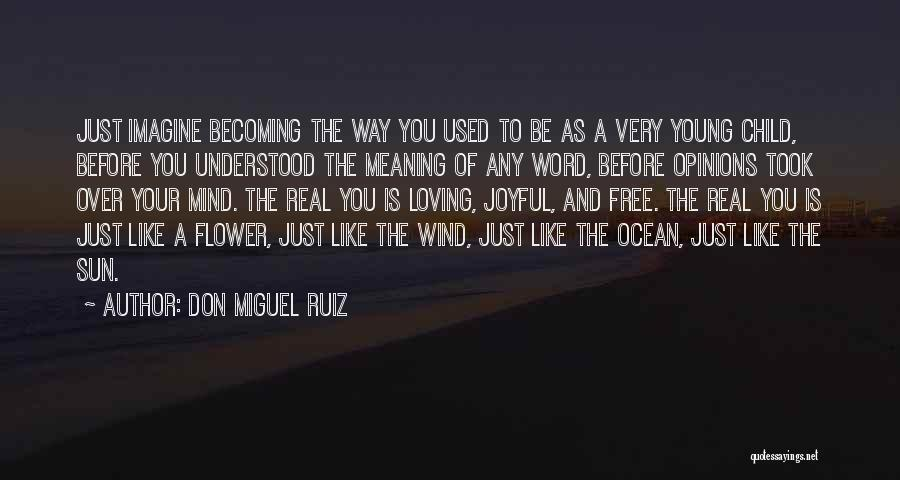 The Loving The Ocean Quotes By Don Miguel Ruiz