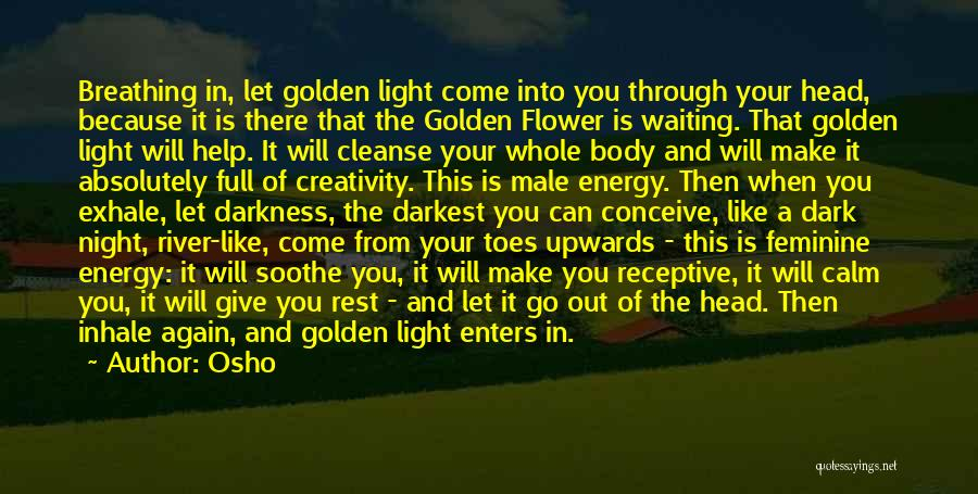 The Male Body Quotes By Osho