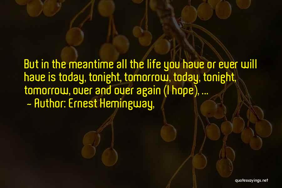 The Meantime Quotes By Ernest Hemingway,