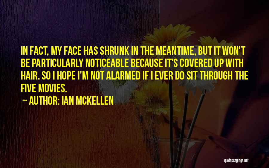 The Meantime Quotes By Ian McKellen