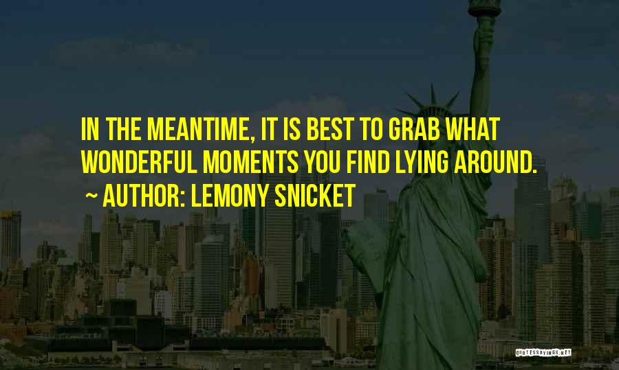 The Meantime Quotes By Lemony Snicket